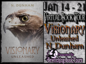 Visionary Button 300 x 225