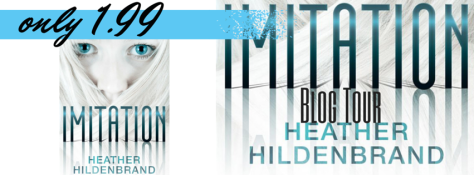 Blog Tour Imitation